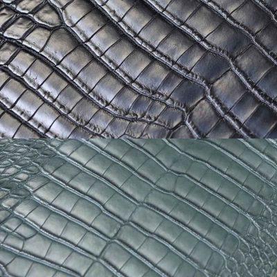 phân biệt da bụng cá sấu Crocodile và da bụng cá sấu Alligator