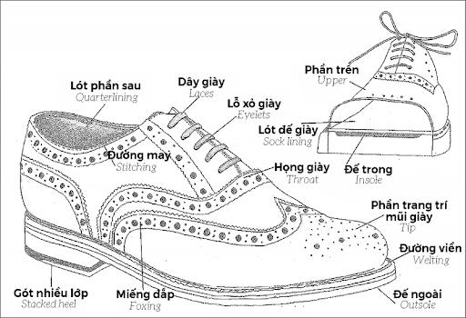 phác thảo kiểu dáng là việc đầu tiên cần làm trước khi sản xuất giày